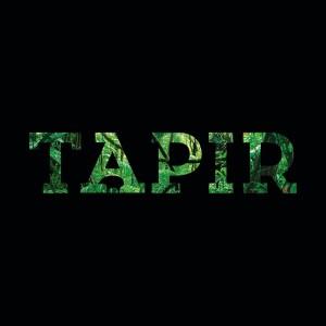 Tapir Media Logo
